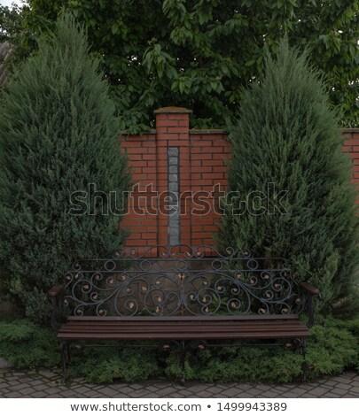 magányos · fa · üres · pad · magány · magány - stock fotó © backyardproductions