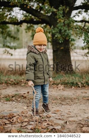 Little happy boy in autumn park Stock photo © Anna_Om