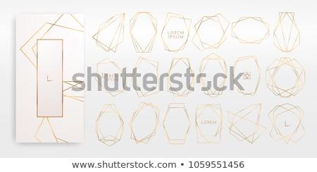Modern geometrik dizayn düğün davetiyesi şablon elemanları Stok fotoğraf © ivaleksa