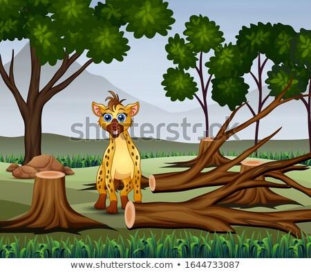 Scena tritato boschi illustrazione foresta natura Foto d'archivio © colematt