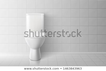 Realistic Restroom Ceramic Toilet Bowl Vector Stock photo © pikepicture