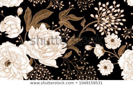 Luxe graphique fleurs laisse deux Photo stock © brahmapootra