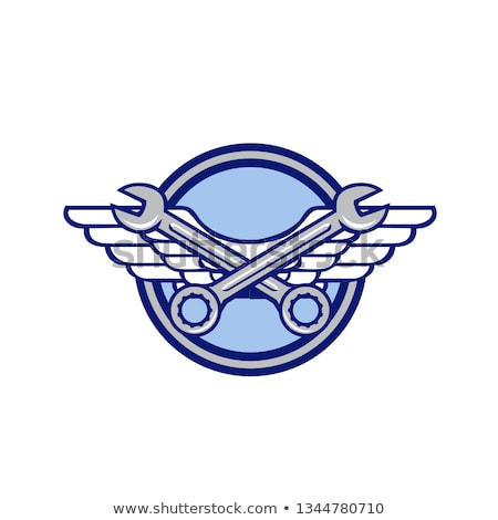 Crossed Spanner Air Force Wings Icon Stock photo © patrimonio