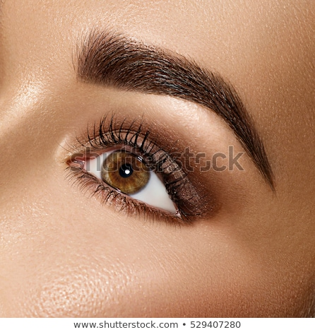 Perfect shape of eyebrows, brown eyeshadows and long eyelashes. Cosmetics and makeup. Modern fashion Stock photo © serdechny