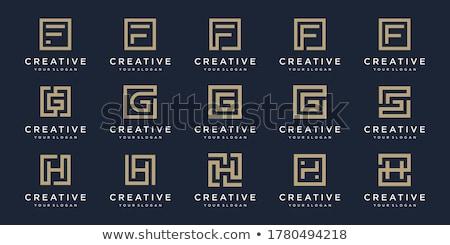 ontwerp · meetkundig · identiteit · logo-ontwerp · sjabloon · lijnen - stockfoto © kyryloff