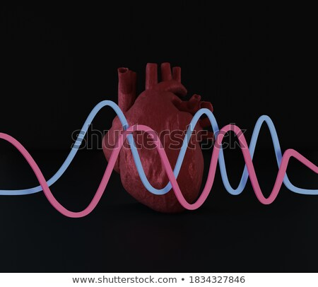 Anatomical human heart icon with vessels and aorta Stock photo © MarySan