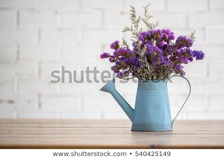 padrão · violeta · flores · imagem · pequeno · olhando - foto stock © galitskaya