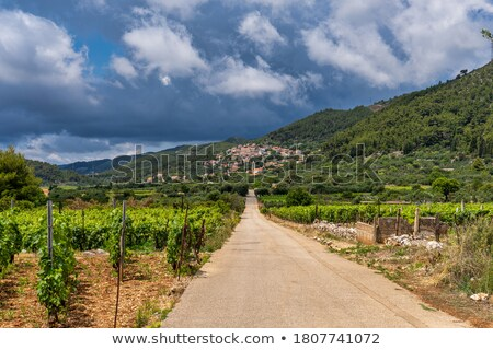 Korcula. Village of Cara in green island landscape view, Stock photo © xbrchx