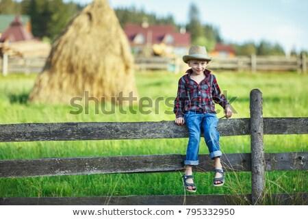 Erkek kovboy oturma kuru ot yığını sevmek Stok fotoğraf © ElenaBatkova