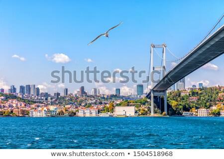 İstanbul ünlü türk seyahat işaret Stok fotoğraf © Terriana