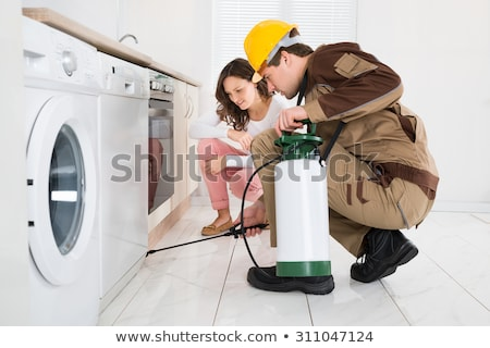Worker Spraying Insecticides In Front Of Housewife Stock photo © AndreyPopov