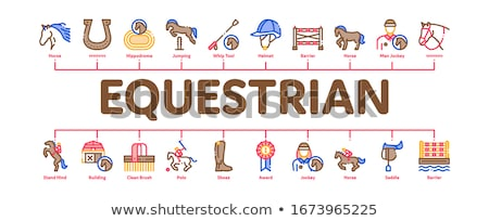 Equestrian Animal Minimal Infographic Banner Vector Stock photo © pikepicture