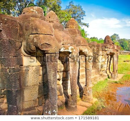 Terraço elefantes angkor Camboja edifício arte Foto stock © raywoo