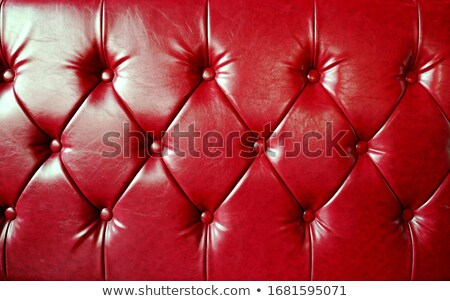 Stok fotoğraf: Red Leather Sofa With Cushions