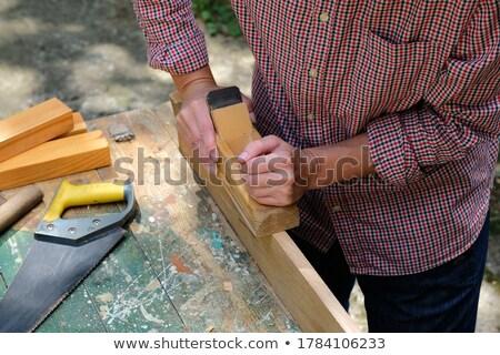 Сток-фото: женщины · плотник · строительство · стены · работу · промышленности