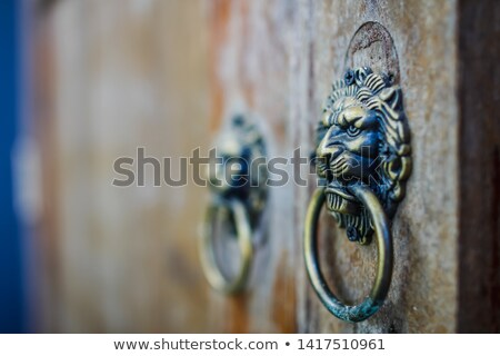 chinese bronze lion stock photo © leungchopan