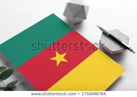почты Камерун изображение штампа карта флаг Сток-фото © perysty