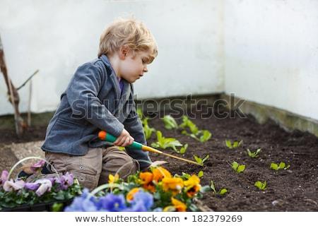Weinig jongen tuinman gezicht kind tanden Stockfoto © photography33