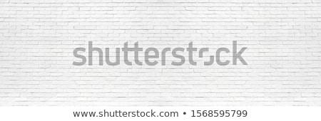 textura · grunge · naranja · cemento · pared · diseno · pintura - foto stock © homydesign