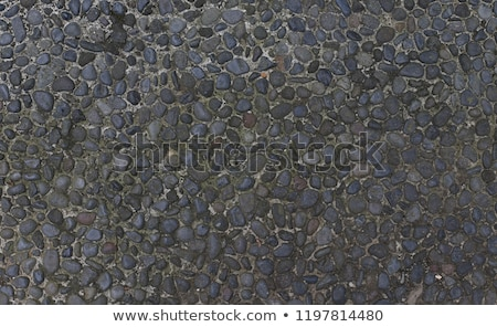 cobbled stone pathway  Stock photo © Snapshot