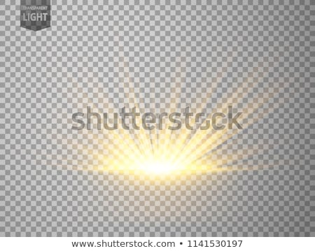 Rise of the sun Stock photo © zzve