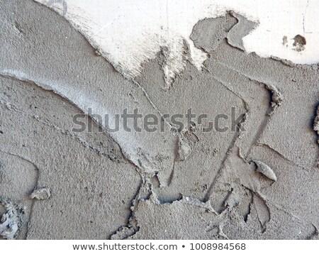 trowel in fresh cement stock photo © dutourdumonde