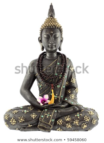 wisdom buddha isolated on a white background Stock photo © bmonteny
