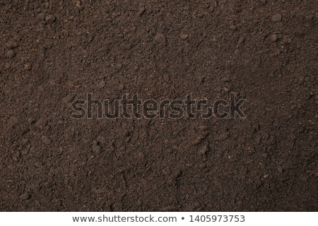 Dry terrain brown soil natural background Stock photo © Anterovium