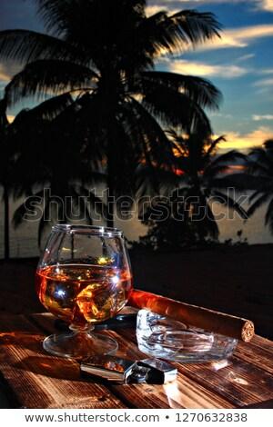 красивой коньяк кубинский сигару белый ром Сток-фото © jarin13
