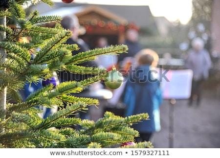 Annual Christmas concert Stock photo © adrenalina
