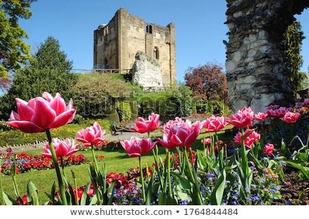 Guildford Castle Stock photo © smartin69