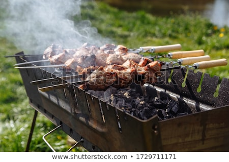 Brazier for kebabs Stock photo © ozaiachin