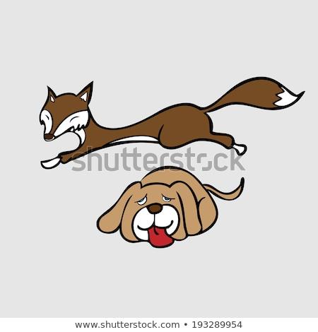 Photo stock: Cute · brun · Fox · illustration · souriant · blanche