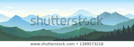Lush grass in the mountains stock photo © Kotenko