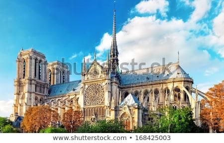 Catedral de Notre Dame Paris crepúsculo cityscape rio França Foto stock © vichie81