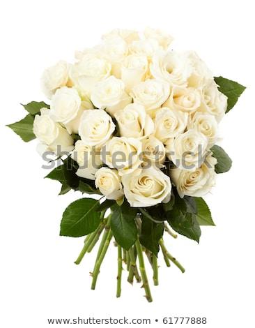 кремом роз букет белый свежие Сток-фото © dariazu