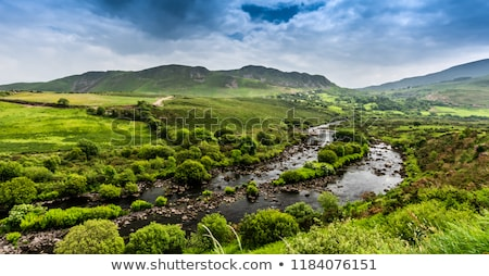 beautiful panorama from the kerry way Stock photo © morrbyte