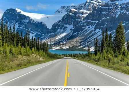 Karayolu kar dağlar manzara doğa dağ Stok fotoğraf © bbbar