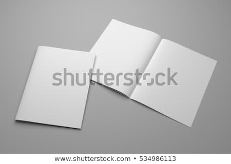 журнала серый 3D бумаги Сток-фото © user_11870380