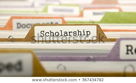 scholarship on file folder blurred image stock photo © tashatuvango