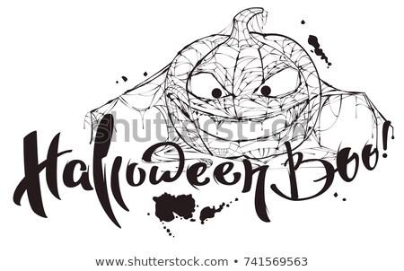 Halloween metin kabak örümcek ağı siluet yalıtılmış Stok fotoğraf © orensila
