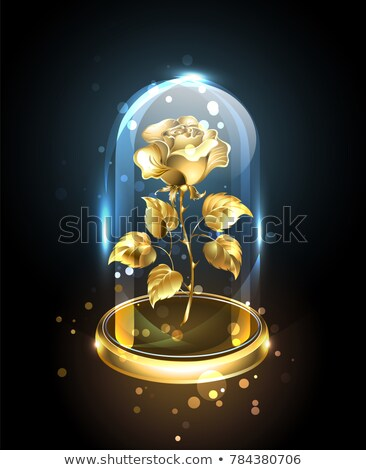 Gold rose under a glass dome Stock photo © blackmoon979