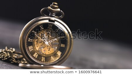Lost Pocket Watch On Chain Stock photo © albund