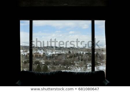 Stock fotó: Kilátás · ablak · Nevada · USA · fa