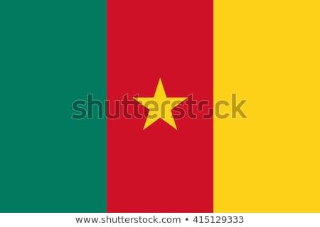 Kamerun banderą biały projektu podróży kolor Zdjęcia stock © butenkow