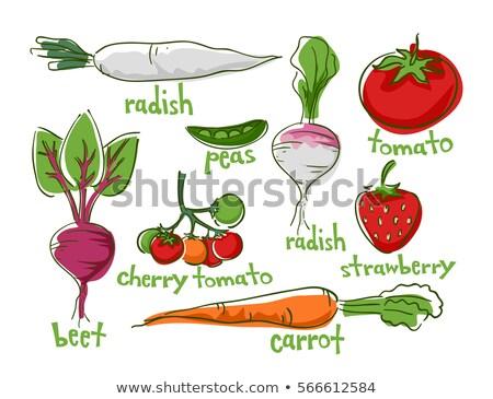 Vruchten groenten gemakkelijk groeien illustratie verschillend Stockfoto © lenm