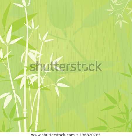 Sortudo bambu naturalismo vários haste folhas verdes Foto stock © Epitavi