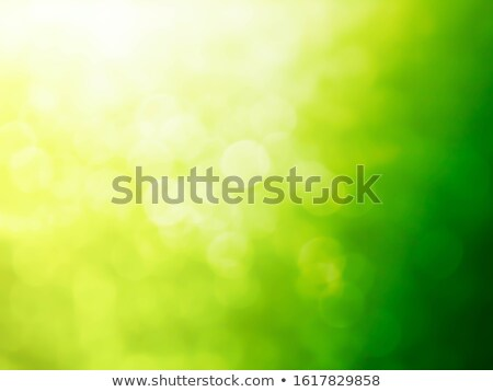 Summer green garden. Beautiful natural blurred bokeh background with bright sun rays. Stock photo © artjazz