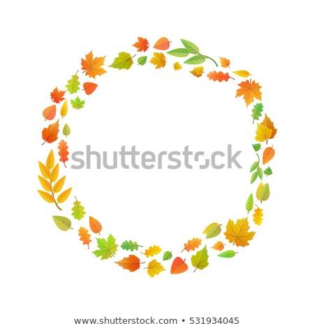 венок · дуб · листьев · декоративный · вектора · осень - Сток-фото © evgeny89