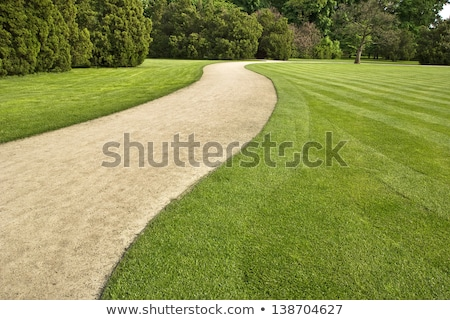 curved path grass lawn stock photo © bobkeenan